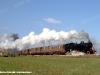La 940 006 impegnata nel treno Fabriano–Castelraimondo, qui ripresa con il treno tra Cerreto d'Esi e Matelica. (13/11/2011; foto Massimo Cornacchia / tuttoTreno)