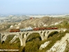 La D 342 4010 con un treno merci storico organizzato da photorail.com (Poggio Pinci di Montalceto, 30/10/2010; foto Michele Cerutti / tuttoTreno)