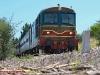 La D 443 1030 alla testa del treno storico Taranto-Spinazzola organizzato da ATSP. (Canne della Battaglia, 06/06/2010; Roberto Galati / tuttoTreno)