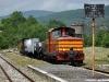 La locomotiva Diesel LM4 602 in manovra a Acerenza, con un treno fotografico Avigliano Città-Gravina di Puglia, composto da carri merci e una carrozza a terrazzini. (Acerenza, 29/05/2010; Pietro Marra / tuttoTreno)