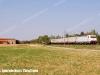 fer-e483_024er-mrs55341reggioemiliaminucciano-lineapontremolese-presso-ozzanotaro-2012-07-18-bosigabriele-wwwduegieditriceit