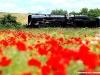 La 475 101 delle Ferrovie Cecke ex CSD, una 2-D-1, alla testa di uno specilae sulla linea Luzna-Zatec. (27/07/2010; foto Gianfranco Berto / tuttoTreno)
