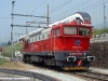 la D 752 509 già appartente alla Del Fungo Giera nello scalo di Chiasso. (27/05/2008; foto Walter Bonmartini / tuttoTreno)