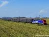 La E 474 015SR di SBB Cargo Italia alla testa di un treno di carri CFL Cargo sulla Domodossola-Novara. (Vignale, 28/08/2009; foto Alessandro Destasi / tuttoTreno)