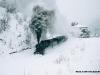 Sotto una tormenta di neve, la 740 143 transita nell'ex fermata di Dantino alla testa di uno straordinario Faenza-Crespino sul Lamone. (26/02/2001; foto Michele Cerutti / tuttoTreno)