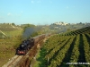 la 740 143 impegnata con un treno speciale sulla Castagnole-Alba. (Neive, 18/10/2009; foto Michele Cerutti / tuttoTreno)