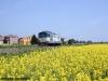 La D 345 1127 isolata effettua il treno NCLS 72624 sulla Rovigo-Verona. (Lendinara, 26/04/2010; foto Riccardo Fogagnolo / tuttoTreno)