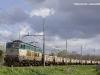 E 655 277 traziona il treno MRV 57300 Civitavecchia-Terni. (Roma Nomentana, 27/03/2010; foto Davide Porciello / tuttoTreno)
