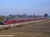 L'AGV  575 003 in corsa prova tra Bologna e Milano nei pressi di Castelfranco Emilia. (25/11/2011; foto Marco Cacozza / tuttoTreno)