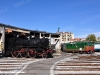 La 640 008 e la D 343 1030 sulla rotonda Diesel a Torino Smistamento. (08/10/2011; foto Pietro Zitano / tuttoTreno)