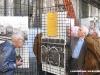 Visitatori alla mostra per i 100 anni del Deposito Locomotive di Torino Smistamento. (08/10/2011; foto Angelo Nascimbene / tuttoTreno)