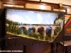"""Il diorama delle SBB esposto alla Mostra """"Signori, in carrozza! L'età d'oro del turismo ferroviario attraverso affiches, diorami e modelli"""", allestita a bordo delle due vetture """"centoporte"""" Bz 36111 (1931) e 36484 (1933) al Museo Ferroviario di Lecce. (13/09/2011; foto Francesco Comaianni / tuttoTreno)"""