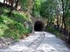 fp-ferroviariminisanmarino-sanmarino-fermatavianapoleone-sanmarino-2012-06-12-renziroberto-wwwduegieditriceit-dsc_1476