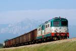 LOcomotive-Diesel